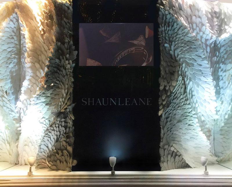 Shaune Leane - Feathers